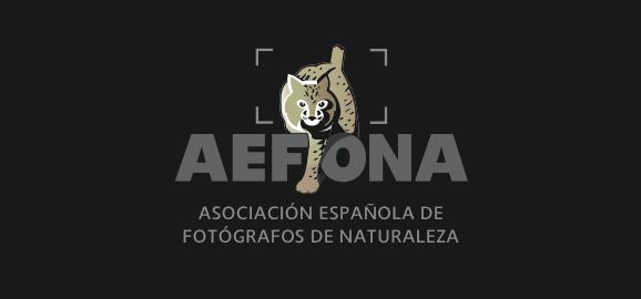 Socio destacado del mes en AEFONA 1