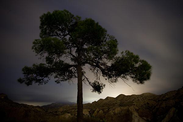 Alicante nocturno con Afali Lucentum 8