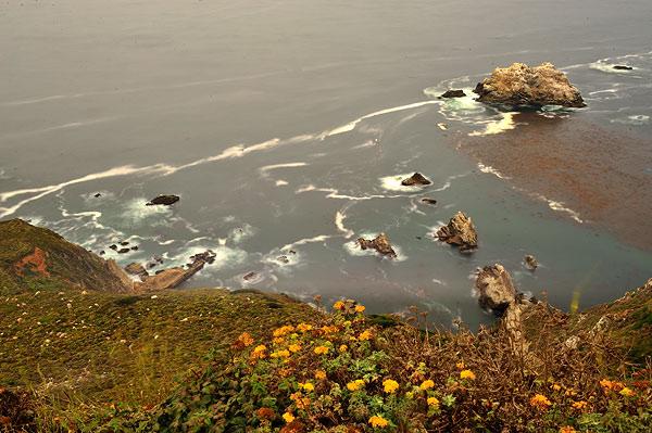 Día 14 de mi viaje a USA. Route 1- Santa Bárbara 3