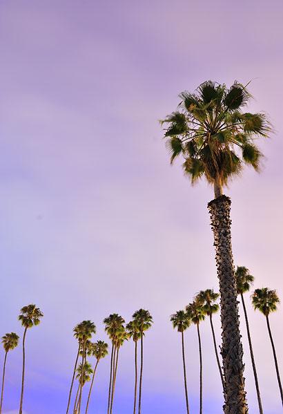 Día 14 de mi viaje a USA. Route 1- Santa Bárbara 15