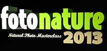Fotonature La Palma 2013 1