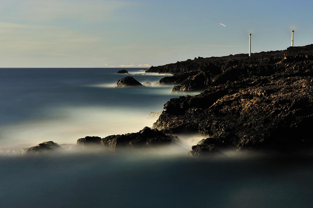 Fotonature La Palma 2013 6