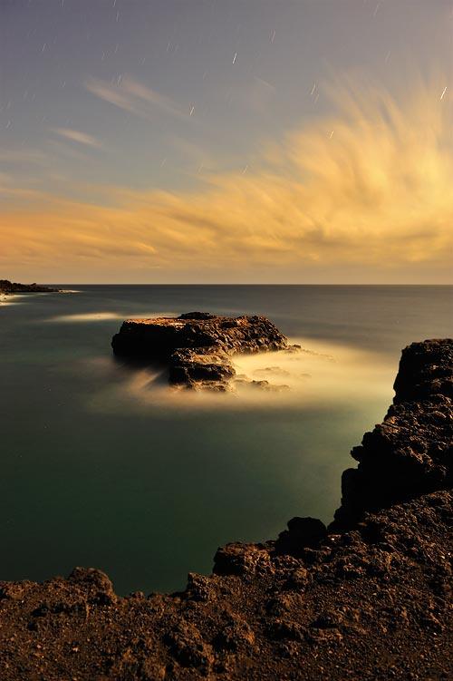 Fotonature La Palma 2013 7