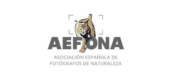 logo-aefona-facebook-p