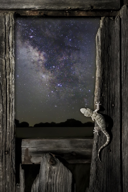 Un ventana al Universo