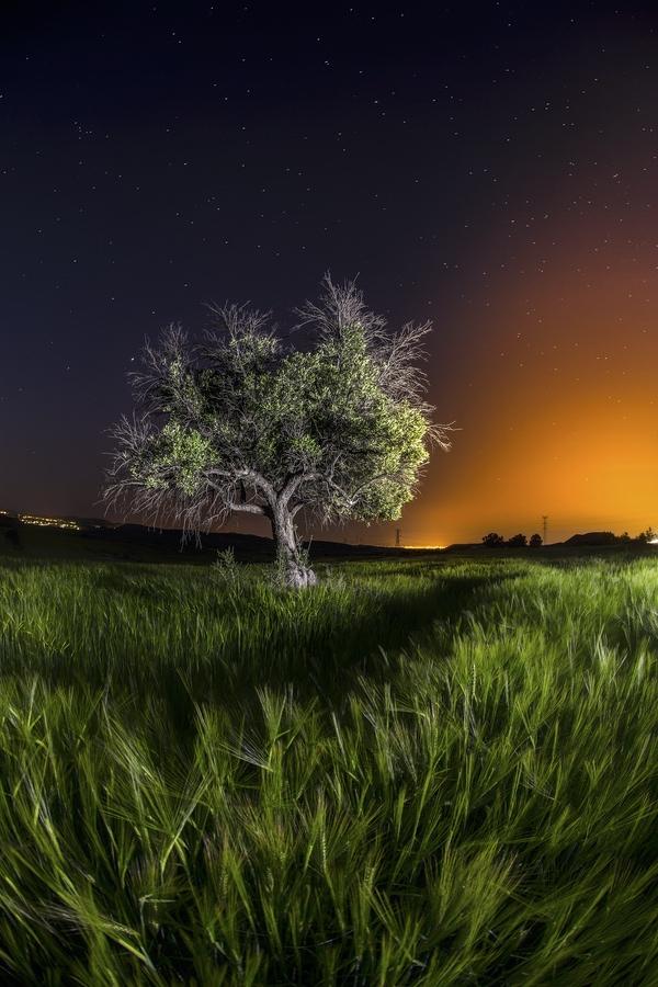 El resplandor de la noche